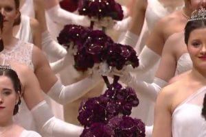 ウィーン国立オペラ座舞踏会(オーパンバル)2020年の動画です